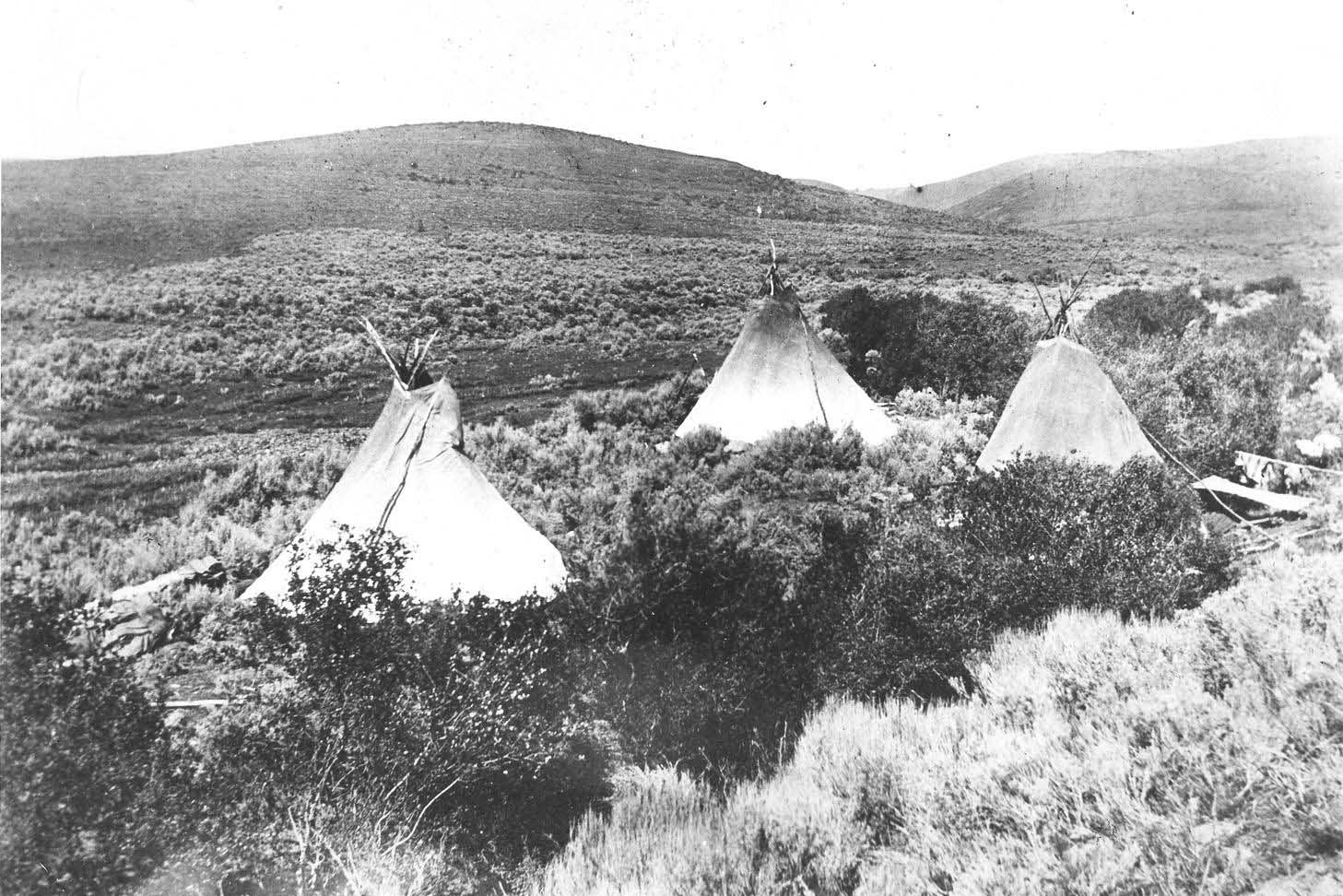 Camped_in_the_sage